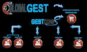 organigrama-global-gest